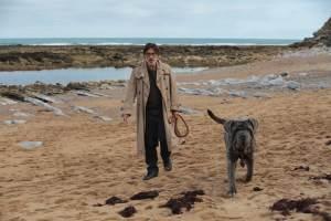 Henri Mohen (Yvan Attal) et son chien Stupide. DR